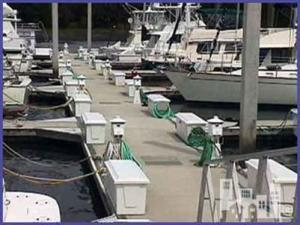 55 ft wet slip in Bradley Creek Marina